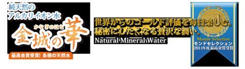 logo_kanagi.png