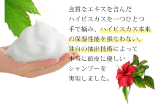 hibiscus1.png